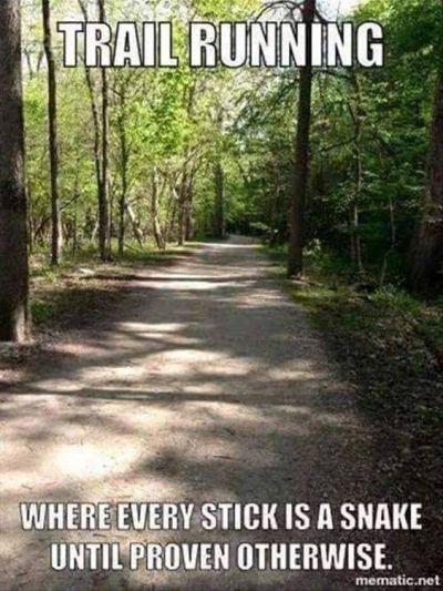 stick?